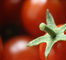 Cherry Tomato by AbsintheFairy
