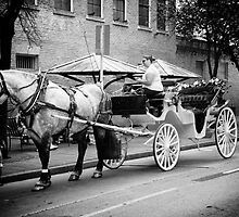 Horse and buggy by Cindy Mikulski