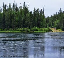 September Rain HDR by rocamiadesign