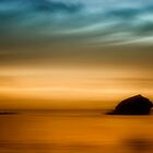 Gull Rock by chrisyfitzuk