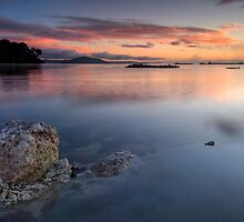 Sulfur Point, Lake Rotorua by Michael Treloar