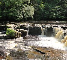 Aysgarth Falls by blackburns