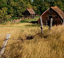 """ Old Farmstead "" by fortner"