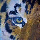 """LSU """"Eye of the Tiger"""" by Cory Smith"""