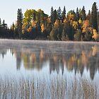 Fall morning mist by Chickapeek