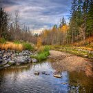 Autumn at Mill Creek by Myron Watamaniuk