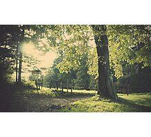 Premiers jours d'automne Photographic Print