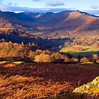Fairfield from Loughrigg Fell - The Lake District by Dave Lawrance