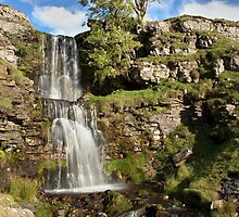 Cow Close Gill Waterfall - Cray by SteveMG
