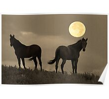 Moon Light Horses Poster