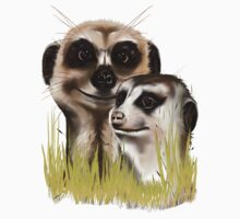 Two Meerkats in grass by Lotacats