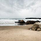 Cathedral Rocks, Kiama, Australia by Wendy  Meder