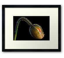 Things to Come Framed Print