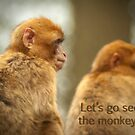 "Primates - ""Let's go see the monkeys""  by steppeland"