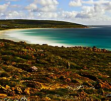 Smiths Beach by Julia Harwood
