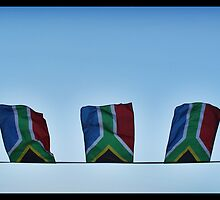 The South African Flag by Ruth Smith