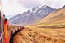 Crossing the Andes - Peru by Nigel Fletcher-Jones