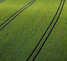 Rolling green countryside by Martyn Franklin