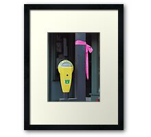 Lawrence, Kansas' tribute to breast cancer research Framed Print