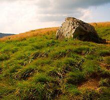 Roan Mountain by Jimmy Phillips