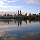 central park | new york city by Anthony Hennessy