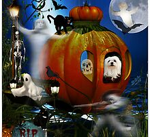 Snowdrop & the Scary Pumpkin Ride ! by Morag Bates