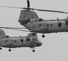 U.S. Military Helicopters by heatherfriedman