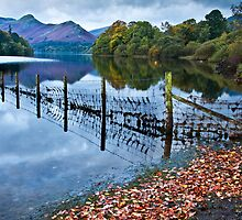 Autumn falls on Derwent water by Shaun Whiteman