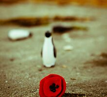 Penguin & poppy by Iuliana Evdochim