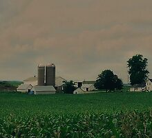 Wisconsin Farm by AuntieJ
