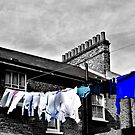 Washing Line by Karen Martin
