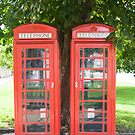 Red Telephone Box by Pauline Tims