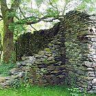 Cunsey Forge, Lake District, Cumbria, England. by Roy  Massicks