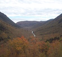 Crawford Notch by neview