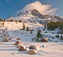 First Snow by Darren White  Photography