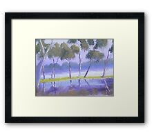 Red River Gums on the mashlands of the Murray River Framed Print