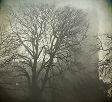 Hingham Church in the fog, Norfolk by DaveTurner
