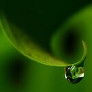 Wave in Green by Ingz