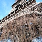 Towering over Paris by Gemma  Williams