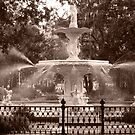 Savannah fountain by DKphotoart