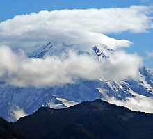 Mt. Rainier - Enumclaw, Washington by Terrie Taylor