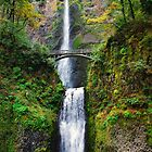 Multnomah Falls by Jennifer Hulbert-Hortman