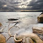 Shark Beach | Sydney | Australia by Pawel Papis