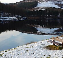 A Place to Reflect, Derwent Reservoir by Rees Adams