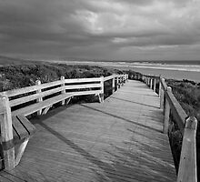 Sandy Point Boardwalk & Beach by Will Hore-Lacy