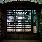 Caged by juliannakoh