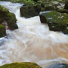 The Strid, Bolton Abbey. by Nick Atkin