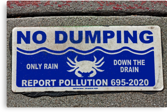 No Dumping  -  A World of Words by Buckwhite