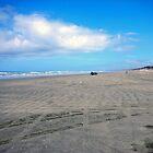 90 Miles Beach by cmehta82