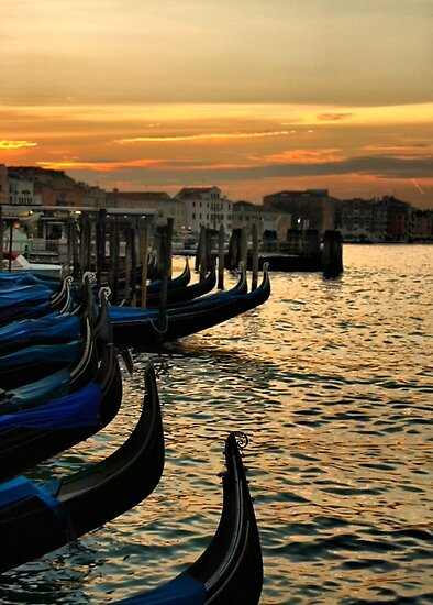 Buon Giorno Venezia by Barbara  Brown